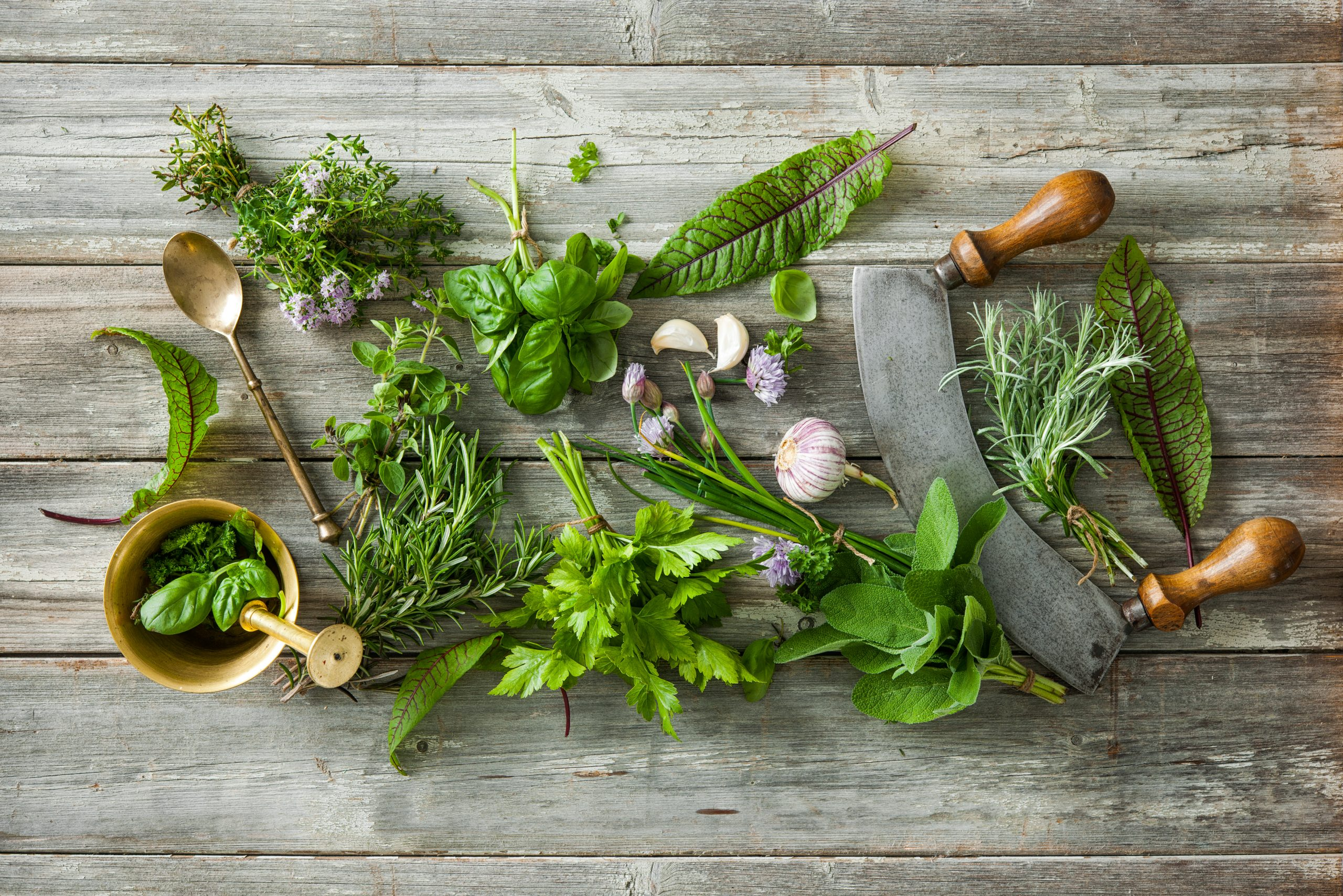 Fines herbes: comment les conserver et bien les utiliser?